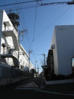 まっすぐな鎌倉街道
