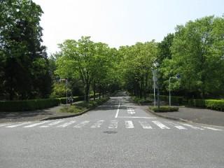 早稲田大学正門前