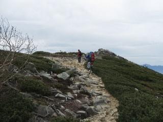 金峰山 森林限界